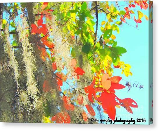 Autumn In Dixie  Canvas Print