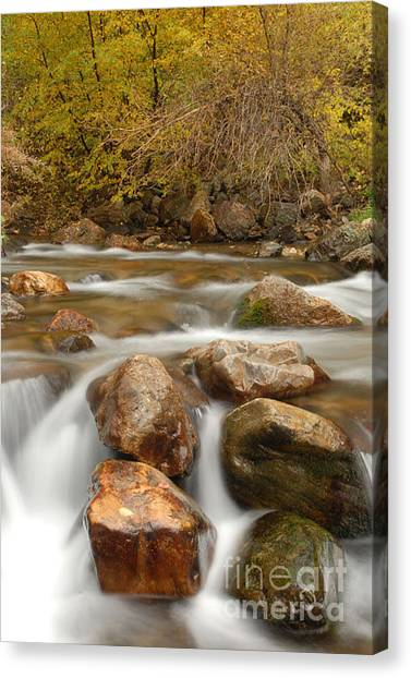 Autumn In Provo Canyon Canvas Print by Dennis Hammer