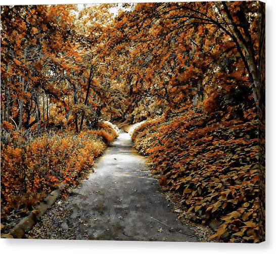 Autumn In Stamford Canvas Print