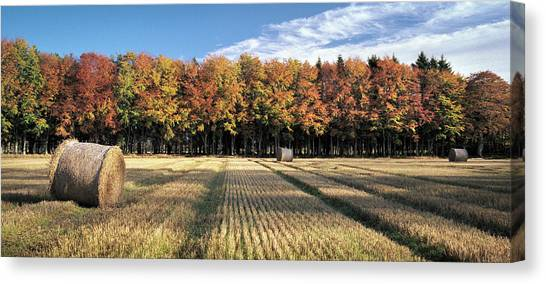 Hay Bales Canvas Print - Autumn In The Fields by Dave Bowman
