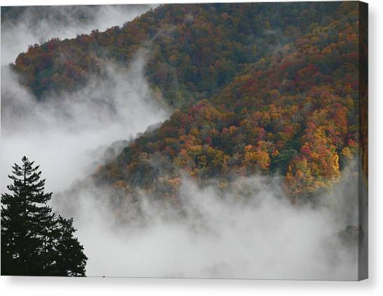Autumn In The Mountains Canvas Print by James Jones