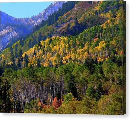 Autumn In Utah Canvas Print