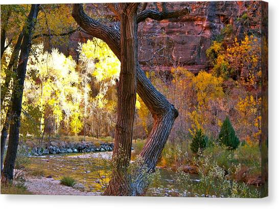 Autumn In Zion Canvas Print
