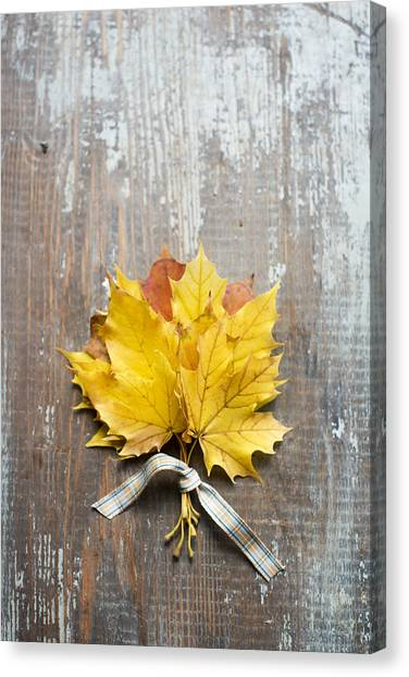 Autumn Leaves Tied With Ribbon Canvas Print