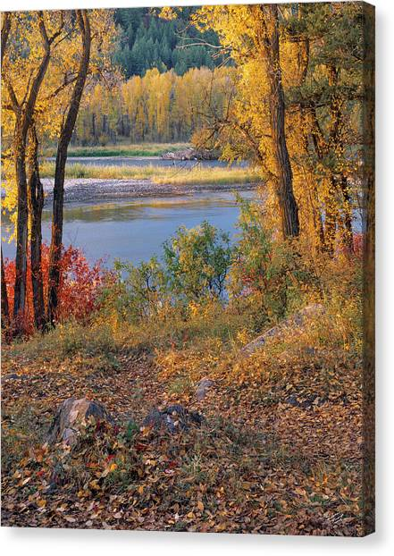 Autumn Canvas Print by Leland D Howard