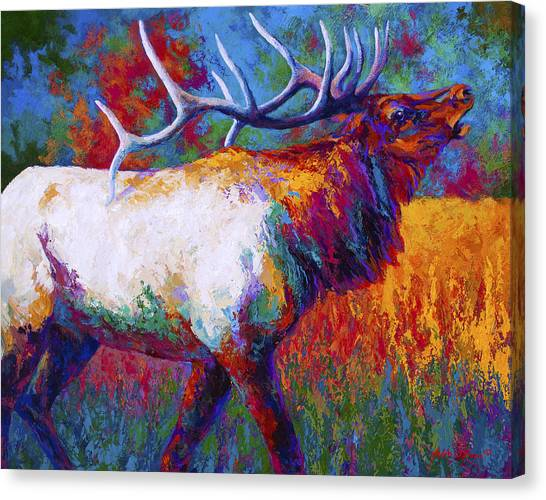 Bulls Canvas Print - Autumn by Marion Rose