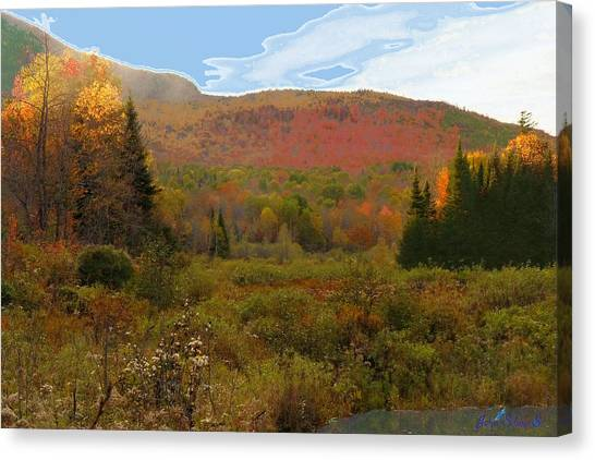 Autumn  Moose Bog Canvas Print
