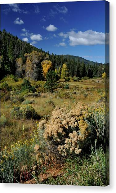Autumn Morning In The Canyon Canvas Print