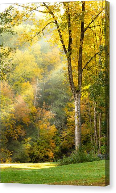 Autumn Morning Rays Canvas Print
