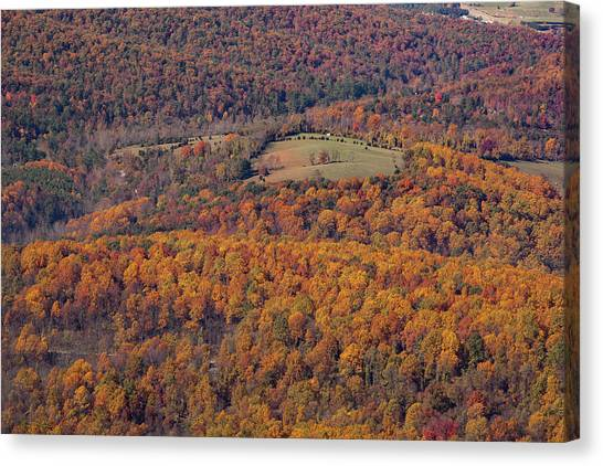 Autumn Mountain Side Canvas Print