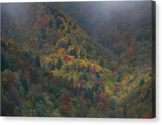 Autumn Mountains Canvas Print by James Jones