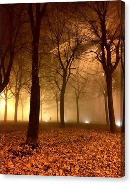 Autumn Canvas Print by Niki Mastromonaco