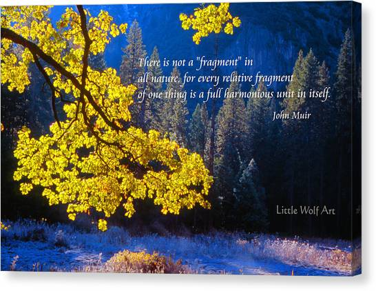 Autumn Oak Yosemite Poster Art Canvas Print