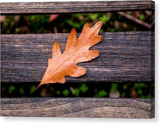 Resting Canvas Print - Autumn Oakleaf On Bench by Tom Mc Nemar