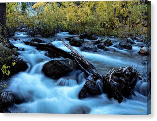 Canvas Print featuring the photograph Autumn On Bishop Creek by Stuart Gordon