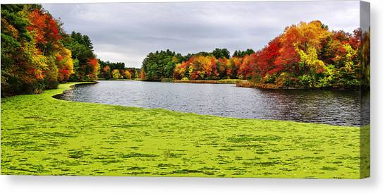 Sudbury Ma Canvas Print - Autumn On Grist Mill Pond In Sudbury by Luke Moore