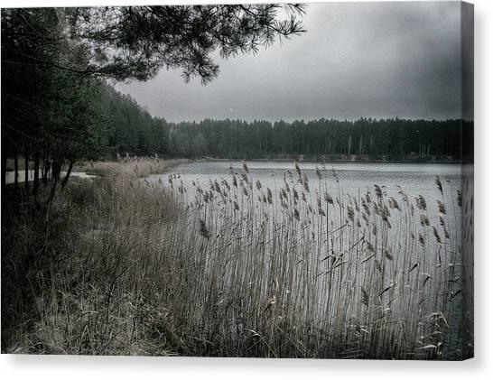 Autumn On Lake. Oleshnya, 2016. Canvas Print