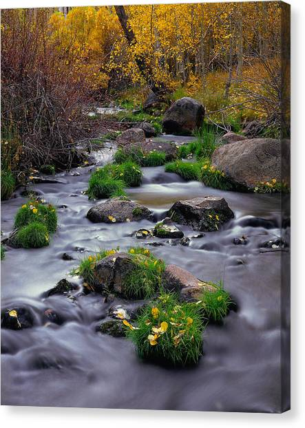 Autumn On Mill Creek Canvas Print