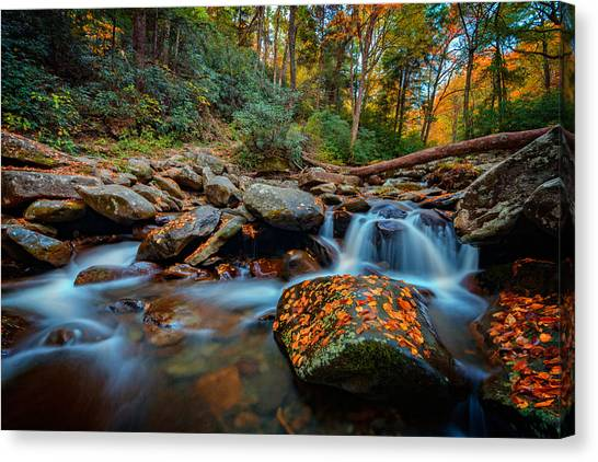 Chimney Tops Canvas Print - Autumn On The Chimney Tops Trail by Rick Berk
