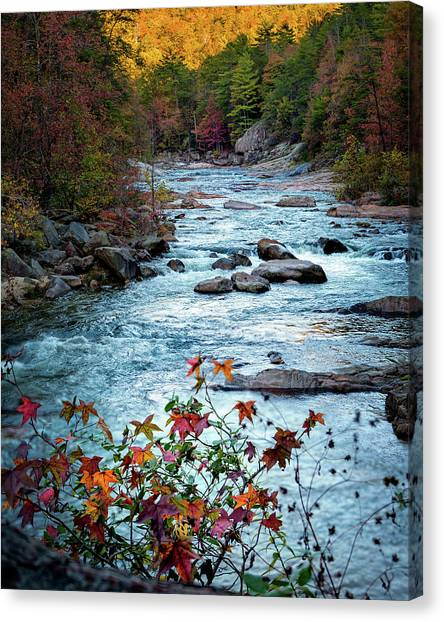 Autumn On Wilson Creek Canvas Print