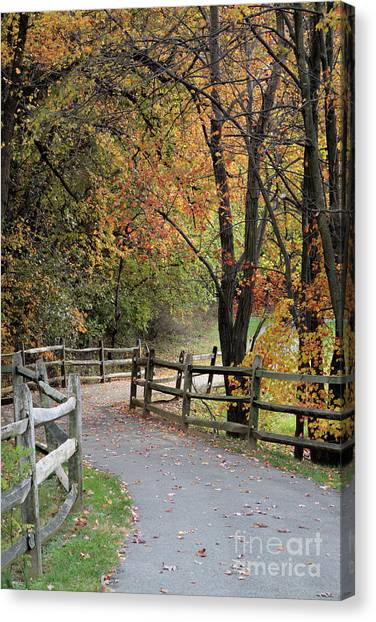 Autumn Path In Park In Maryland Canvas Print