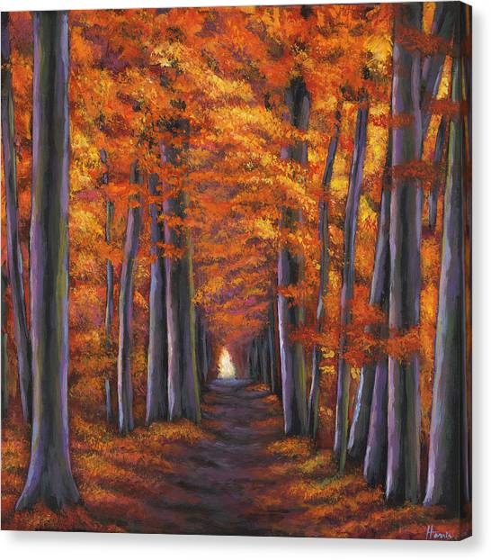 Orange Tree Canvas Print - Autumn Path by Johnathan Harris