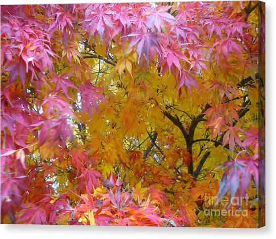 Autumn Pink Canvas Print