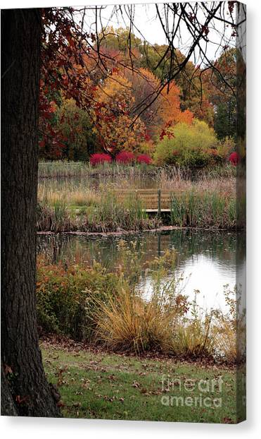 Autumn Pond In Maryland Canvas Print