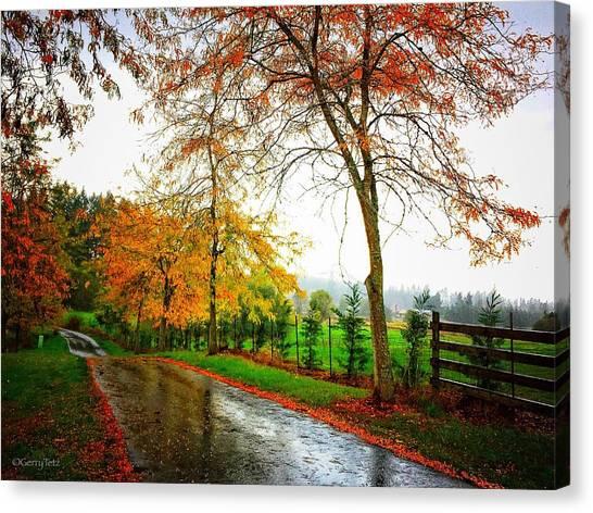 Autumn Rains Canvas Print