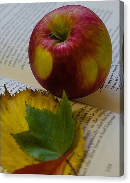 Autumn Reading Canvas Print