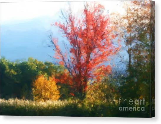 Autumn Red And Yellow Canvas Print