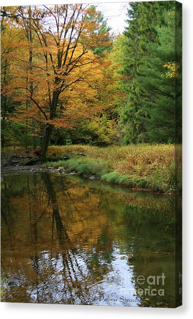 Autumn Reflections Canvas Print by Debra Straub