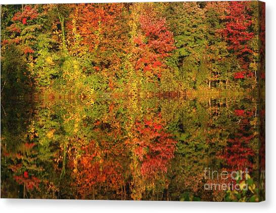 Autumn Reflections In A Pond Canvas Print