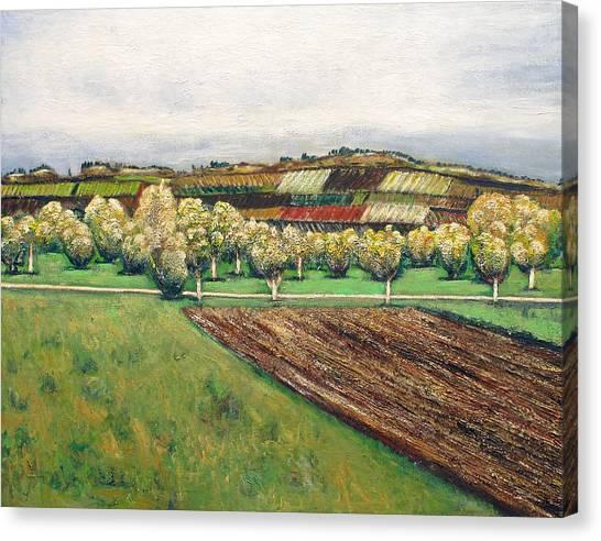 Autumn Road Canvas Print by Vladimir Kezerashvili