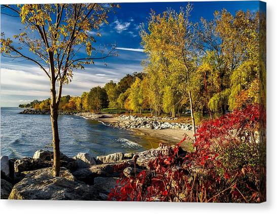 Autumn Scene Lake Ontario Canada Canvas Print