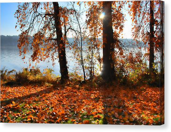 Autumn. Canvas Print