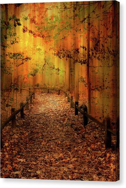 Canvas Print featuring the photograph Autumn Silkscreen by Jessica Jenney
