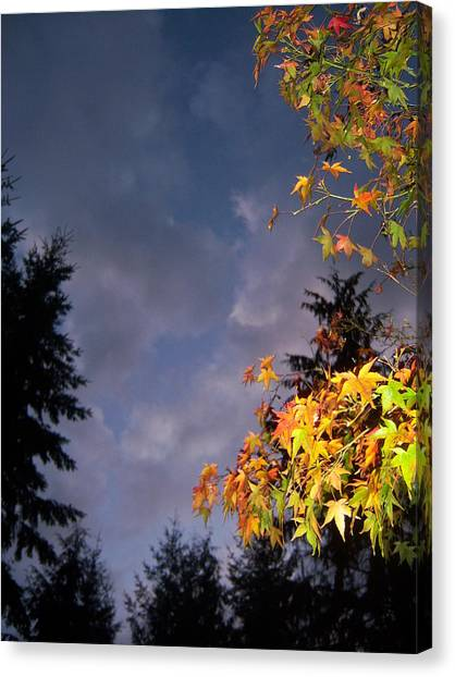 Autumn Sky Canvas Print by Ken Day