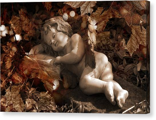 Autumn Sleep Canvas Print