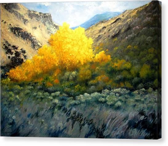 Autumn-southhills Canvas Print