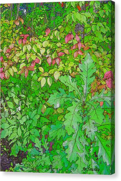 Autumn Splender Canvas Print