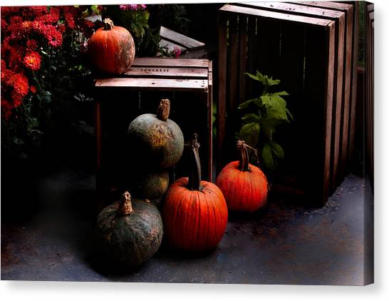Autumn Squash Canvas Print