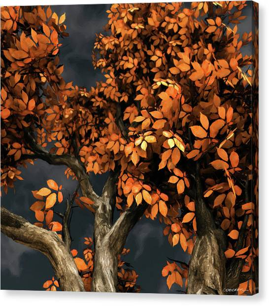Orange Tree Canvas Print - Autumn Storm by Cynthia Decker