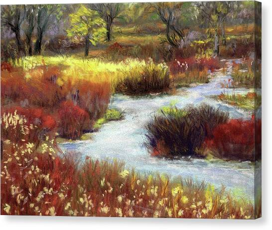 Autumn Stream Canvas Print
