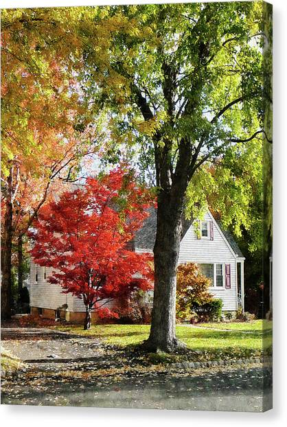 Autumn Street With Red Tree Canvas Print by Susan Savad