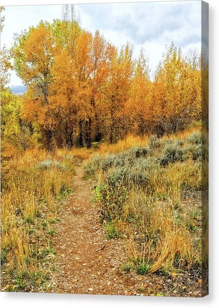 Autumn Walk Photo Canvas Print