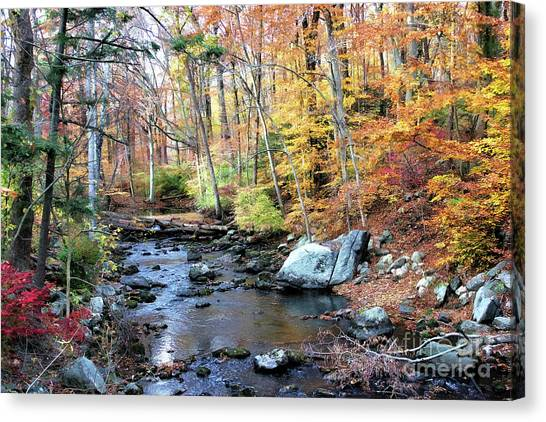 Autumn Woodlands Canvas Print