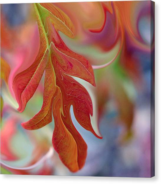 Autumnal Aria Canvas Print by Suzy Freeborg