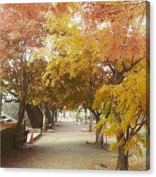 Fairies Canvas Print - Autumnal Festival by Kanna Fairy