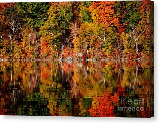 Autumnal Reflections Canvas Print by Andrea Simon